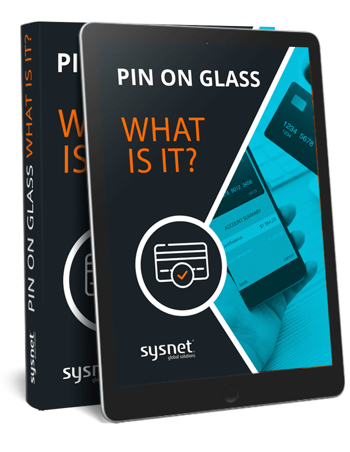 PIN-on-Glass-–-What-is-it-eBook